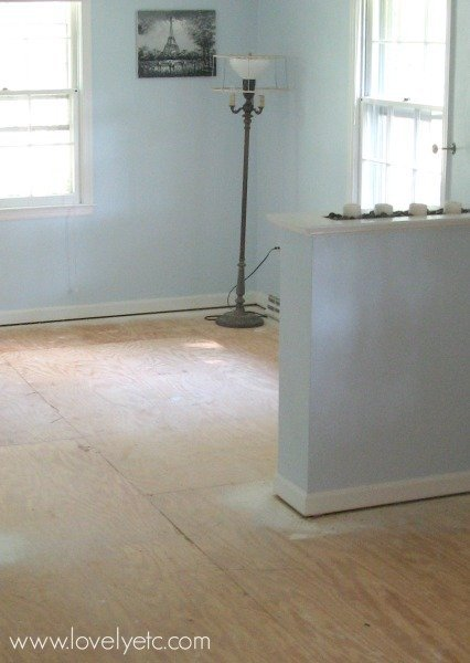room with bare plywood subfloors
