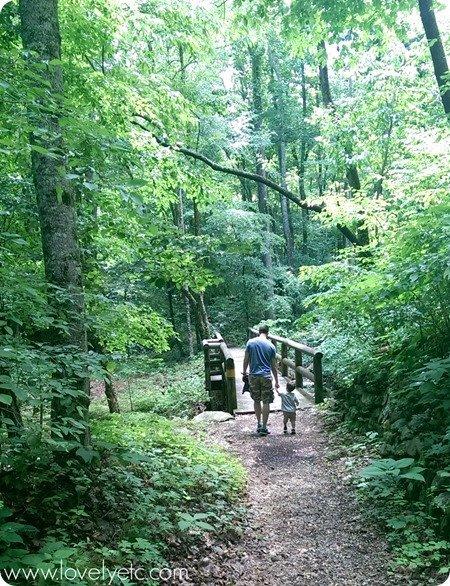 seven mile hike