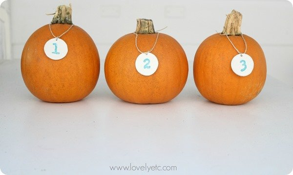 pumpkins with clay tags