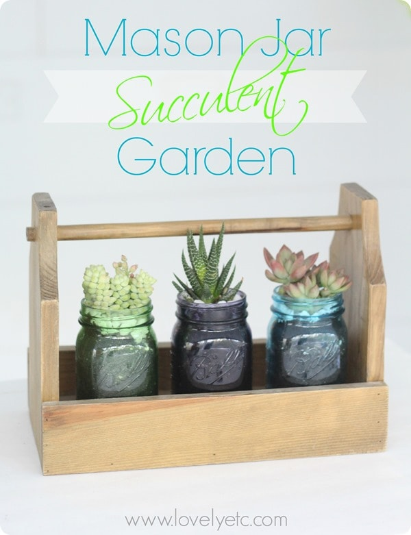 Mason Jar Succulent Garden And Giveaway Lovely Etc