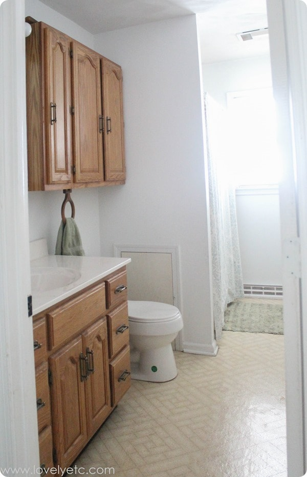 outdated bathroom cabinets before