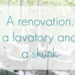 A renovation, a lavatory, and a skunk