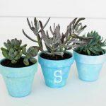 Painted Flower Pots: A DIY Gift Idea