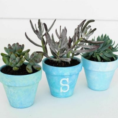 Painted Flower Pots: A DIY Gift Idea