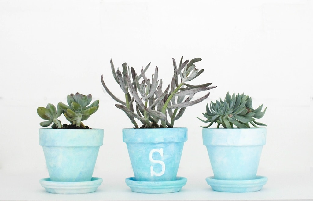 Painted Flower Pots: A DIY Gift Idea - Lovely Etc.