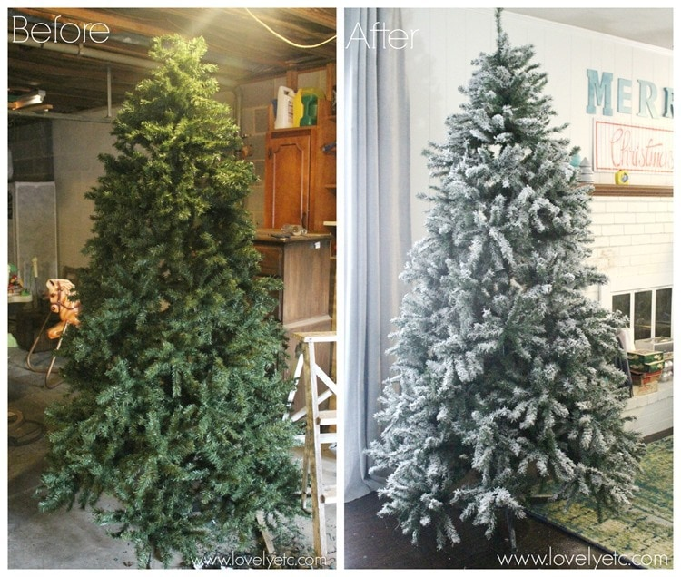tree-before-and-after_thumb.jpg