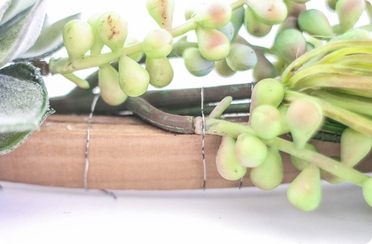 attach succulents to wreath with wire