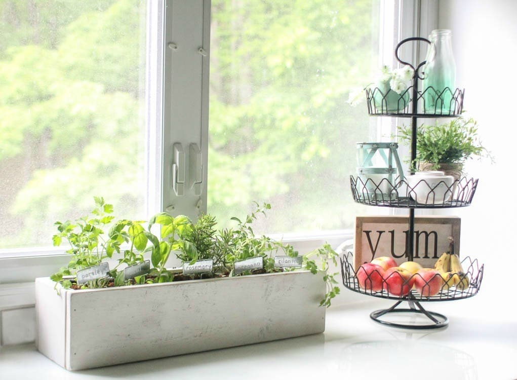 How to create a beautiful kitchen herb garden - Lovely Etc.