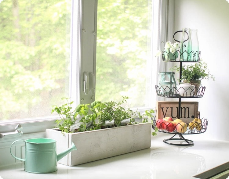 kitchen herb garden and tiered tray