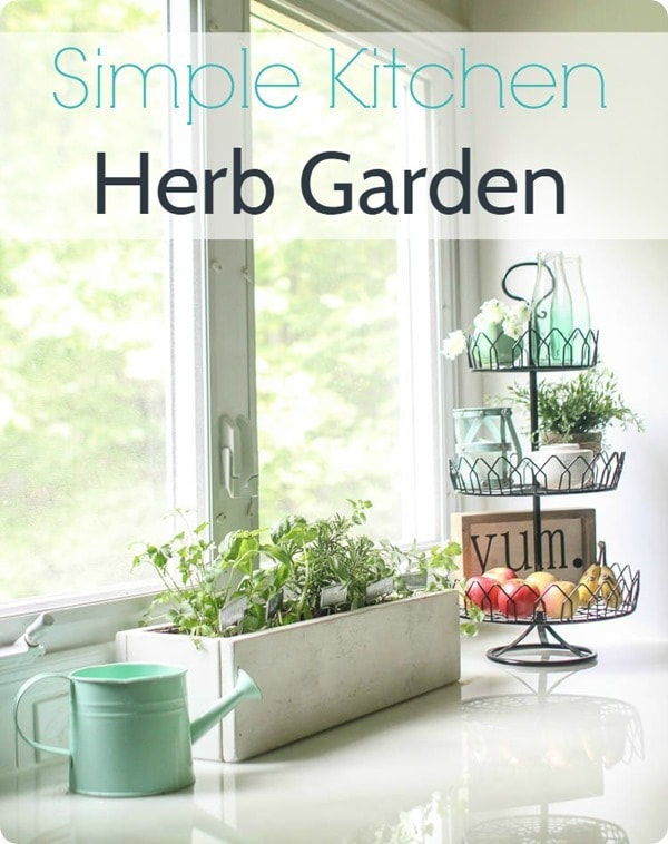 simple kitchen herb garden 3