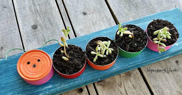 repurposed succulent planter