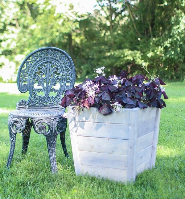 Large DIY wooden planter box - from the DIY book Wood Plank Projects by Carrie Spalding