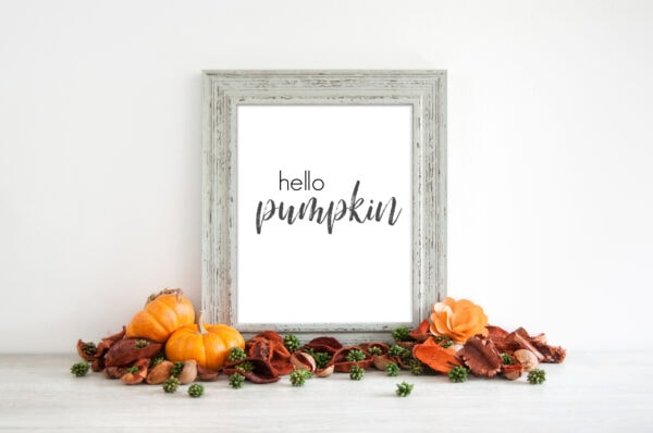 Hello pumpkin free fall printable
