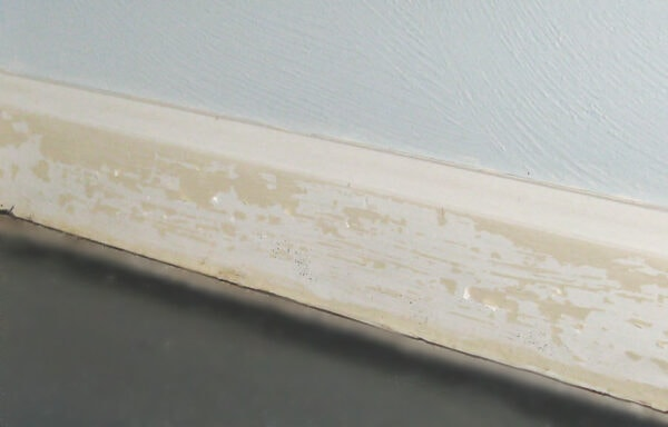 latex paint peeling off oil paint on trim
