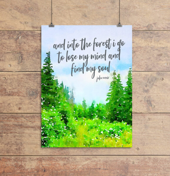 free printable art with john muir quote - and into the forest I go to lost my mind and find my soul