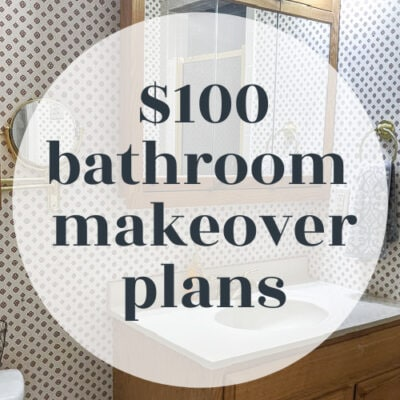 Plans for An Ambitious $100 Bathroom Makeover