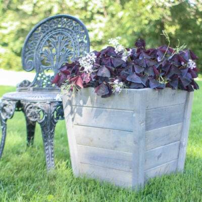 How to Make a Gorgeous DIY  Planter Box for Cheap
